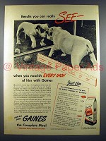 1945 Gaines Dog Food Ad w/ Bulldog