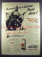 1945 Gaines Dog Food Ad w/ Boxer - Looks Feels Acts