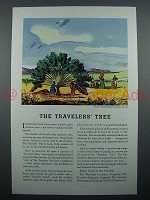 1935 Travelers Insurance Ad - The Travelers Tree