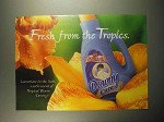 1999 Tropical Bloom Downy Detergent Ad - Fresh
