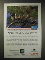 1994 Canon FLC Display Ad - West Indian Whistling-Duck