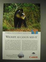 1996 Canon BJC-610 Bubble Jet Printer Ad - Mandrill