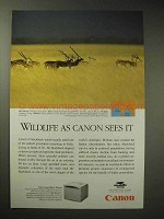 1996 Canon LBP 360PS Laser Beam Printer Ad - Blackbuck