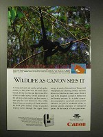 1996 Canon FPA-3000EX3 Ad - Black Spider Monkey