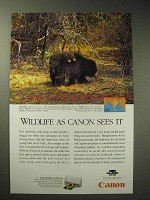 1997 Canon BJC-4200 Color Printer Ad - Sloth Bear