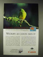 1998 Canon BJC-4400 Printer Ad - Orange-Bellied Parrot