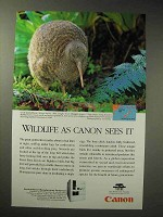 1998 Canon FPA-3000EX4 Ad - Great Spotted Kiwi