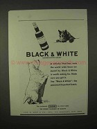 1935 Black & White Scotch Whisky Advertisement - Scottish Terrier