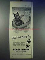 1956 Black & White Scotch Ad - What a Safe Feeling!