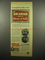 1954 Allied Chem. Arcadian American Nitrate of Soda Ad