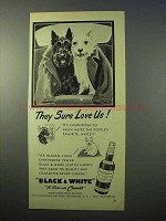 1952 Black & White Scotch Ad - They Sure Love Us!