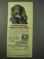 1951 Milk-Bone Dog Biscuit Ad - At Home Afield I Thrive