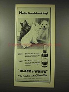 1948 Black & White Scotch Ad - Hello Good-Looking!
