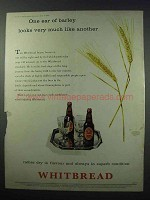 1960 Whitbread Ale Ad - One Ear of Barley