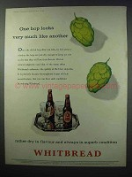 1960 Whitbread Ale Ad - One Hop Looks Like Another
