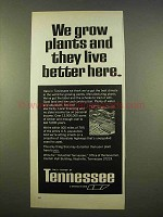 1963 Tennessee Industry Ad - We Grow Plants