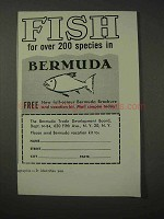 1958 Bermuda Tourism Ad - Fish for Over 200 Species