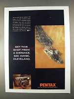 1996 Pentax IQZoom 160 Camera Ad - From a Distance