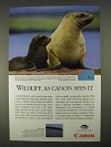 1996 Canon Solar Cells Ad - Hooker's Sea Lion