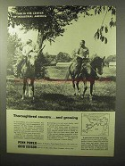 1964 Ohio Edison Penn Power Ad - Thoroughbred Country