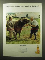 1964 Haig & Haig Scotch Ad - Who Knows As Much About Scotch?