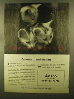 1944 Ansco Brovira Paper Ad - Curiosity and Cats