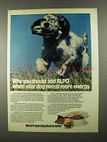1974 Alpo Beef Chunks Dinner Dog Food Ad - More Energy
