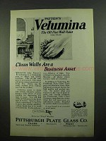1923 Pittsburgh Plate Glass Patton's Velumina Paint Ad