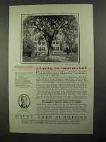 1923 Davey Tree Surgeons Ad - Cannot Save Itself
