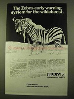 1970 SAA South African Airways Ad - Zebra Wildebeest