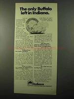 1971 Indiana Department of Commerce Ad - Buffalo