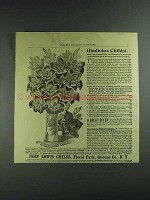 1893 John Lewis Childs Gladiolus Childsi Ad