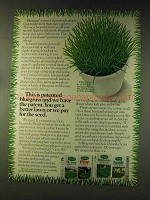 1976 Scotts Victa Grass Seed Ad - Patented Bluegrass