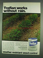 1978 Elanco Treflan Ad - Works Without Rain