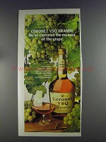 1980 Coronet VSQ Brandy Ad - Essence of the Grape