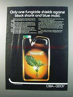 1981 Ciba-Geigy Ridomil Ad - Black Shank and Blue Mold