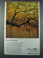 1981 Hilton International Ad - Life of Leisure