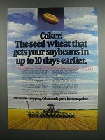 1984 Coker 797, 983, 916 and 747 Wheat Ad