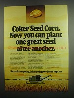 1984 Coker Seed Corn Ad - One After Another