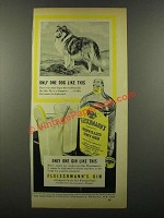 1941 Fleischmann's Gin Ad - Only One Dog Like This