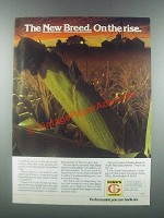 1985 Funk's Hybrid Seeds Ad - On the Rise