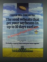 1985 Coker 983 and 916 Seeds Ad - The Seed Wheats