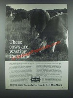 1985 MoorMan's 2nd Century Mintrate Blocks Ad