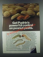 1985 Shell Pydrin Ad - Powerful Control on Peanut Pests