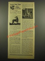 1964 Purina Dog Chow Ad - Farm Dog Tips from Tex
