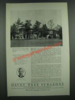 1919 Davey Tree Surgeons Ad - Estate of J. Ogden Armour