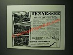 1953 Tennessee Division of State Information Ad - See it All This Year