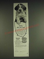 1933 Purina Dog Chow Ad - Lazy, did you say?