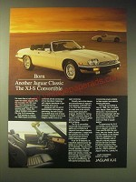 1989 Jaguar XJ-S Convertible Ad - Born another Jaguar Classic