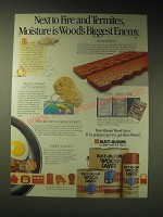 1989 Rust-Oleum Wood Saver Paint Ad - Next to fire and termites
